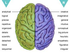 Left vs Right Brain: Which Hemisphere Dominates You? right brain: Which hemisphere dominates you? (I scored 9 and respectively. Brain Gym, Your Brain, Left Vs Right Brain, Brain Pictures, Brain Mapping, Ap Psychology, Brain Facts, Science Facts, Brain Aneurysm