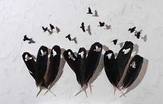 Feather art by Christ Maynard