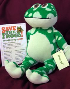 stuffed-frog-with-card