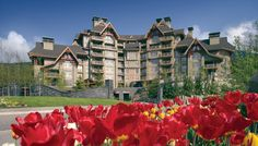 Four Seasons Resort and Residences Whistler | Canada: Your Post-Election Escape Plan