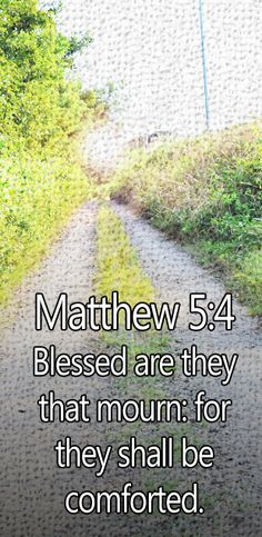 Blessed are those who mourn, for they will be comforted. - Matthew 5:4