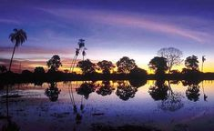 Pantanal, ecological tourism in Brazil!