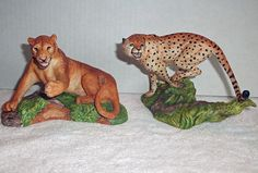 BIG CATS OF THE WORLD NATIONAL WILDLIFE FEDERATION COMPLETE 12 PCS SET