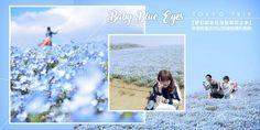 """每逢四月份,都會有好多朋友吵吵嚷嚷的說:我要去日本旅遊賞櫻花!!!難道日本四月份除了櫻花,就沒有其他花好看了?不不不!小編這裡再介紹你另一個""""相機吃飽飽""""的地點!除了少女情懷爆標的粉紅櫻花之外,你千萬不要錯過的就是現在正夯爆社交網絡的【Baby Blue Eyes藍色粉蝶花花海】Where to Go?這些稱之為""""嬰兒藍眼睛""""的藍色粉蝶花海,其實就位於東京茨城縣的國營日立海濱公園。這個公園啊據說有5個迪士尼樂園這麼大哦!整山的藍色花海只要站在遠遠的就可以看到了!How to Go? 可以搭乘JR常磐線,然後在【勝田站】下車,再到東口2號乘車處轉搭茨城交通巴士至海濱公園西口,前往的路程需要20分鐘左右。若搭乘德士的話,大約需要15分鐘車程。 When Is The Best…"""