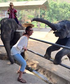 Elephant places hat on your head