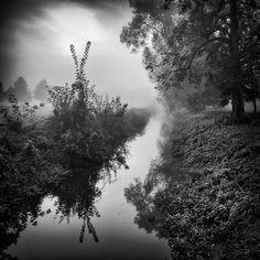 Mirror, Park Veltrusy, 2014 by Vladimir Zachoval on Art Limited