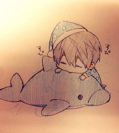 Adorable!!! ... From おまめ ... Free! - Iwatobi Swim Club, haruka nanase, haru nanase, haru, free!, iwatobi, nanase, dolphin