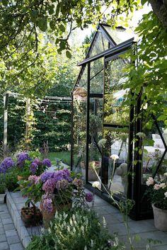 My loving home and garden: Junior Orangeri Small Greenhouse, Greenhouse Gardening, Summer Garden, Home And Garden, Scandinavian Garden, Landscape Curbing, Backyard Plan, Garden Studio, Garden Gates
