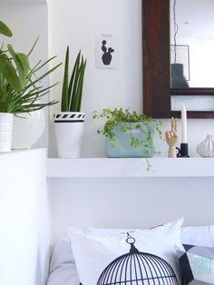 Urban Jungle Blogger: Plantshelfie 2 by @valentinaadc