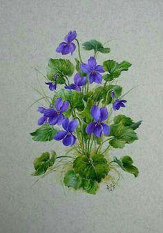 Vintage Botanical Prints, Botanical Drawings, Romantic Flowers, Vintage Flowers, Botanical Flowers, Botanical Art, Art Floral, Painting & Drawing, Watercolor Paintings