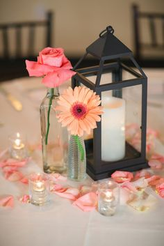 Single stem gerbera and rustic lantern. Cute Coral Gray wedding at Briscoe Manor, Houston, by Luke and Cat Photography Only saving for the flower petals idea. Coral Wedding Centerpieces, Cheap Wedding Bouquets, Lantern Centerpieces, Flower Centerpieces, Gerbera Daisy Centerpiece, Centerpiece Ideas, Coral Grey Weddings, Grey Wedding Decor, Rustic Wedding