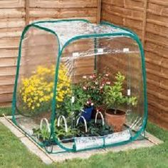 How to Make a Mini Greenhouse #stepbystep