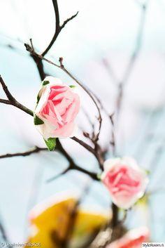 Askartele pääsiäiseksi. Kuva Satu Nyström