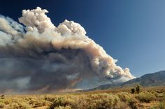 Health Recommendations for Wildfire Smoke #healthtips #wildfiretips #breathingtips