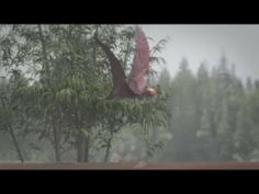 Pterosaur: Flying reptiles come to life for museum exhibition - YouTube