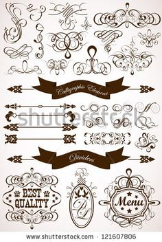 Collect Calligraphic And Floral Design Element, Vintage Dividers And Frames, Illustration - 121607806 : Shutterstock