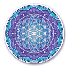 Mandala Arts Window Sticker Double Sided Dragon Fire 11.7cm