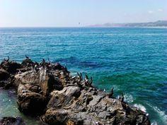 Desde Avenida Marina, Viña del Mar