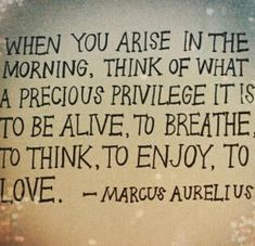 #meditation #mindfulness Marcus was a smart dude. Words Quotes, Me Quotes, Motivational Quotes, Inspirational Quotes, Famous Quotes, Wisdom Quotes, Life Quotes Love, Great Quotes, Quotes To Live By
