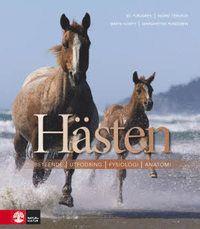 14 bästa bilderna på Häst | Hästar, Dressyr, Ridning