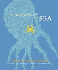 This charming compendium is swimming with exotic sea life- over 600 creatures of the deep are beautifully illustrated! What a wonderful gift for a young adult who is interested in the anatomy of the sea. Marine Conservation, Life Aquatic, Oceans Of The World, Marine Biology, Ocean Creatures, Inspirational Books, Marine Life, Natural History, Under The Sea