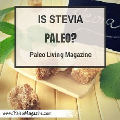 is stevia paleo?