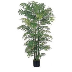 Nearly Natural 6' Areca Silk Palm Tree in Green >>> More info could be found at the image url.