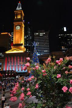 Christmas Tree Brisbane Town Hall @ Night Time
