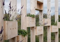 Hedge School is made up of a ring of thin wooden columns, linked by steel wiring and plant pots that are staggered at varying heights.