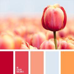 amarillo anaranjado, carmín alizarina, color rojo sonrosado, colores de la primavera, colores de las tulipas rosadas, coral, de color plata, de zanahoria, frambuesa, gris y rosado, matices de color carmesí, paleta de colores para primavera, plateado, rojo, tonos carmesí suaves.