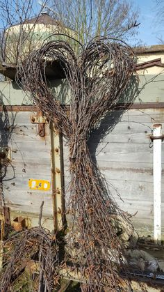 Best Indoor Garden Ideas for 2020 - Modern Christmas Yard Decorations, Western Theme, Valentine Wreath, Fun Projects, Grape Vines, Shabby Chic, Lion Sculpture, Wreaths, Statue