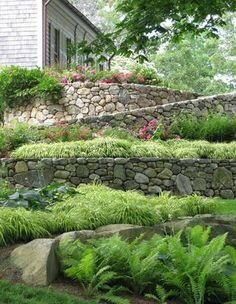 Love the stone wall with the soft grassy plantings.  Leaf Magazine Autumn 2012 - Classic Cape - www.leafmag.com