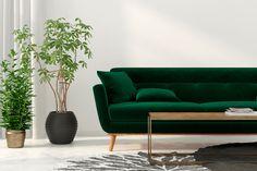 grønn sofa i stue