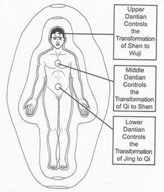 Chi Kung   Dantians   Qigong: