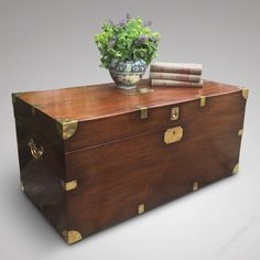 19th Century Mahogany Campaign Trunk - Antiques Atlas