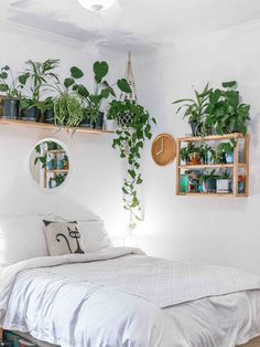 How to Turn Any Space into an Urban Jungle Bedroom Plants Decor, Room Ideas Bedroom, Small Room Bedroom, My Room, Cozy Small Bedrooms, House Plants Decor, Plant Decor, Urban Rooms, Urban Bedroom