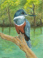 """Fish Finder"" original watercolor by Jan Burley"