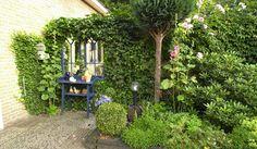 Optisch bedrog in kleine tuin Garden Inspiration, Outdoor Living, Garden Design, Pergola, Backyard, Outdoor Structures, Plants, Google, Gardens
