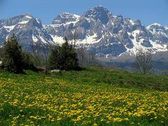 Peña Telera - Pirineo de Huesca