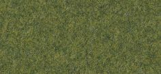 East Urban Home Patterned Green Area Rug Rug Size: Rectangle x