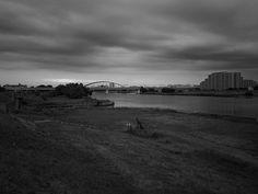 多摩川 Tamagawa River