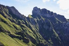 Schneck im Allgäu Private Website, Green Earth, Places To See, To Go, Germany, Wanderlust, Europe, Mountains, Nature