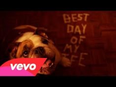 "Music Video Premiere From ""American Authors"" Stars Adorable Bulldog Ready To Be Adopted"