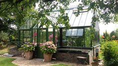 Gewächshäuser: Blickfang im Garten
