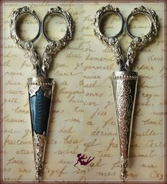 Beautiful scissors and keep