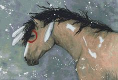 Cross stitch kit by AmyLyn Bihrle 'Majestic Mustang Tahalo' - Horse counted cross stitch