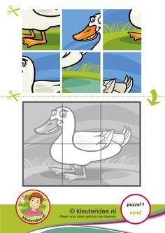 1. Puzzel eend, kleuteridee, thema de sloot, Preschool duck puzzle, free printable op A3 of A4 formaat