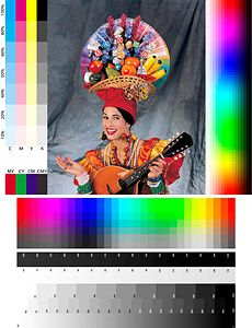 Shedding Light on #Photoshop Histogram and Info Panels @msjphotosite