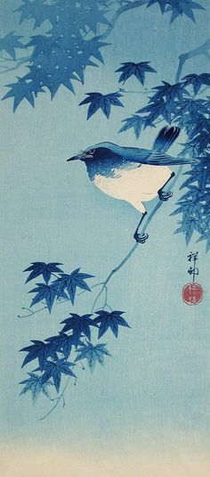 Blue Robin on a Maple Branch Ohara Shōson (Koson) (Japan, 1877-1945) Japan, 1935 Prints; woodcuts Color woodblock print Image: 14 3/4 x 6 9/16 in. (37.47 x 16.67 cm); Sheet: 15 5/16 x 7 in. (38.90 x 17.78 cm) Gift of Chuck Bowdlear, Ph.D., and John Borozan, M.A. (M.2000.105.152) Japanese Art