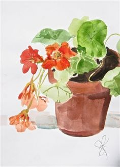 Nasturtiums in a pot - watercolor flowers by Gretchen Kelly